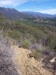 April 7, Hike Kennedy Ridge Trail with trail guide author, Craig Carey and OVLC Preserve Manager, Rick Bisaccia