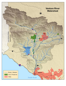 Coordinating a Watershed by OVLC's Ventura River Watershed Coordinator, Lorraine Walter