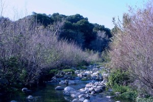 Rice Creek Reroute in Ojai