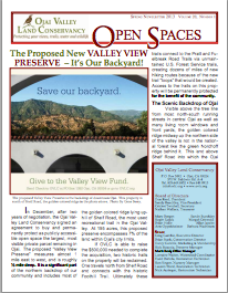 Open Spaces Newsletter – Spring 2013 (PDF)