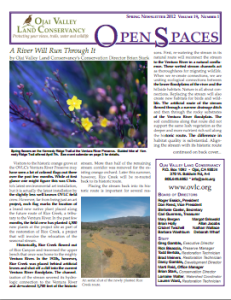 Open Spaces Newsletter – Spring 2012 (PDF)