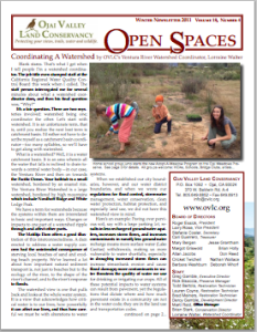 Open Spaces Newsletter – Winter 2011 (PDF)
