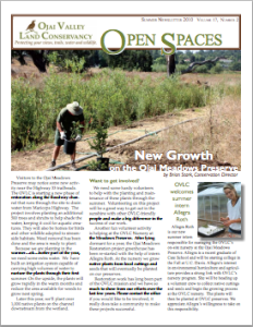 Open Spaces Newsletter – Summer 2010 (PDF)