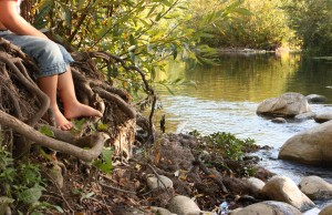 Ventura River protected for the future