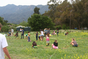 Workday on the Ojai Meadows Preserve
