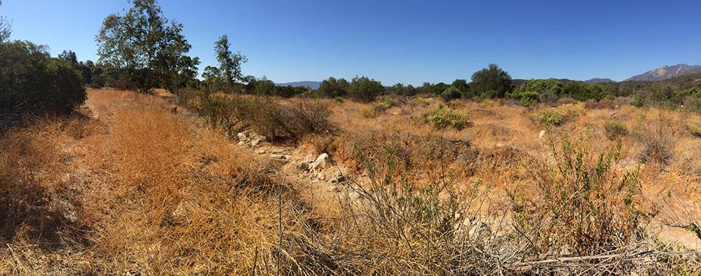 Ventura River Preserve