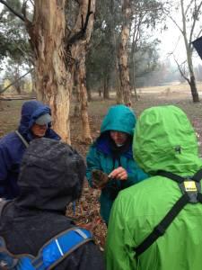Last Winter's walk with Jesse Grantham - in the Rain!