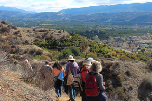 All About Ojai: Herb Walk with Lanny Kaufer
