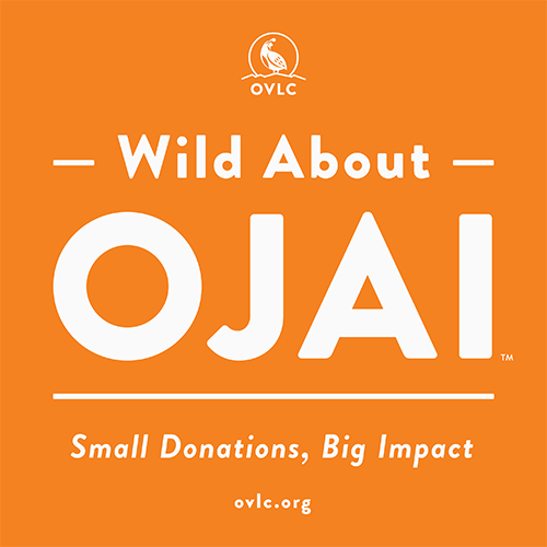 Wild About Ojai