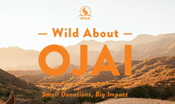 1% for Ojai Program Gets New Name and Look
