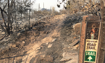 Thomas Fire Updates